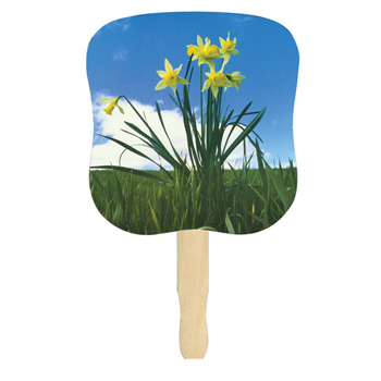 Stock Design Hand Fan-Daffodils