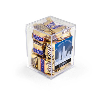 "3"" Geo Container-Snickers Minis"
