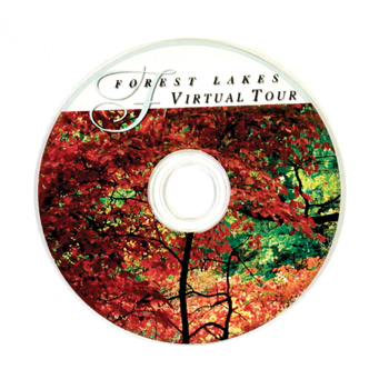 Mini CDR - Blank/Recordable, Full Color Digital